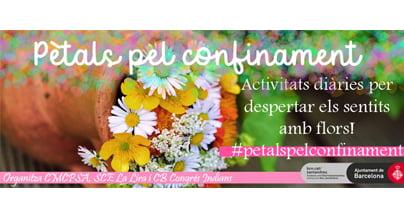 Un presentem el Maig Florit! #petalspelconfinament
