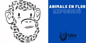 EXPOSICIÓ: Animals en flor de Rachel Polo